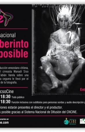 El laberinto de lo posible, FLACSO Cine.