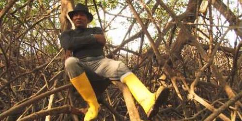 """Embedded thumbnail for Primer concurso de video documental """"Miradas hacia la sustentabilidad"""""""